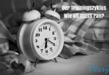 Trainingszyklus im Fitnesstraining