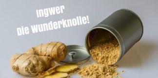 Ingwer Superfood