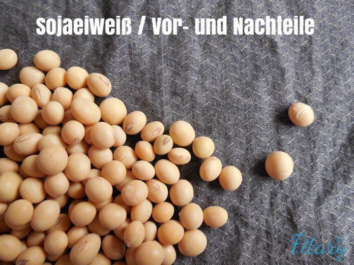 Sojaeiweiß Sojaprotein Supplement