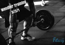 Wendler Trainingssystem 5/3/1