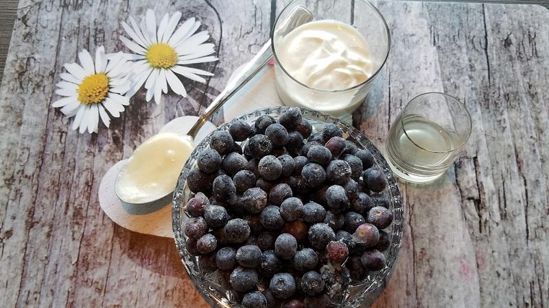 Frozen Joghurt selber machen, Frozen Joghurt, Blaubeerjoghurt